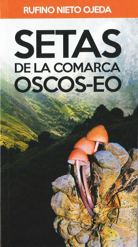 Setas de la comarca Oscos-Eo