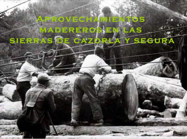 Aprovechamientos madereros en las Sierras del Parque Natural